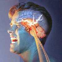 Obat Sakit Kepala Sebelah